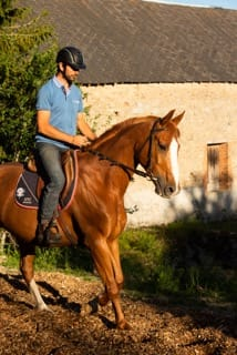 Haras Vie Passion - Julien Fournier {JPEG}
